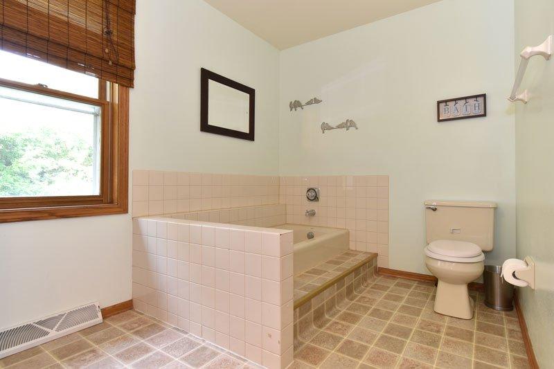 Brookfield bathroom shower before remodel