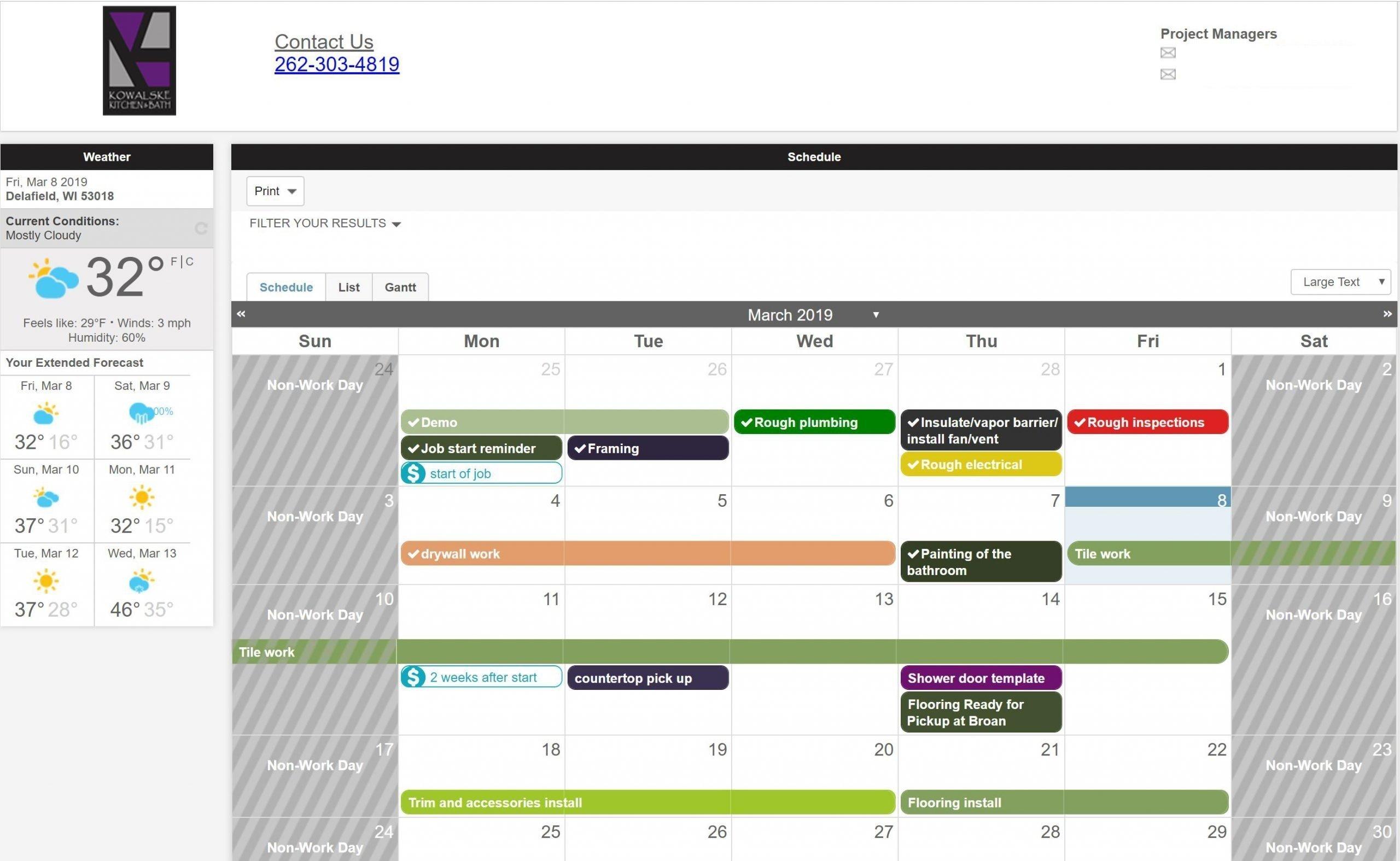 Project schedule calendar
